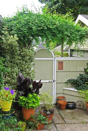 Hannan Garden Design